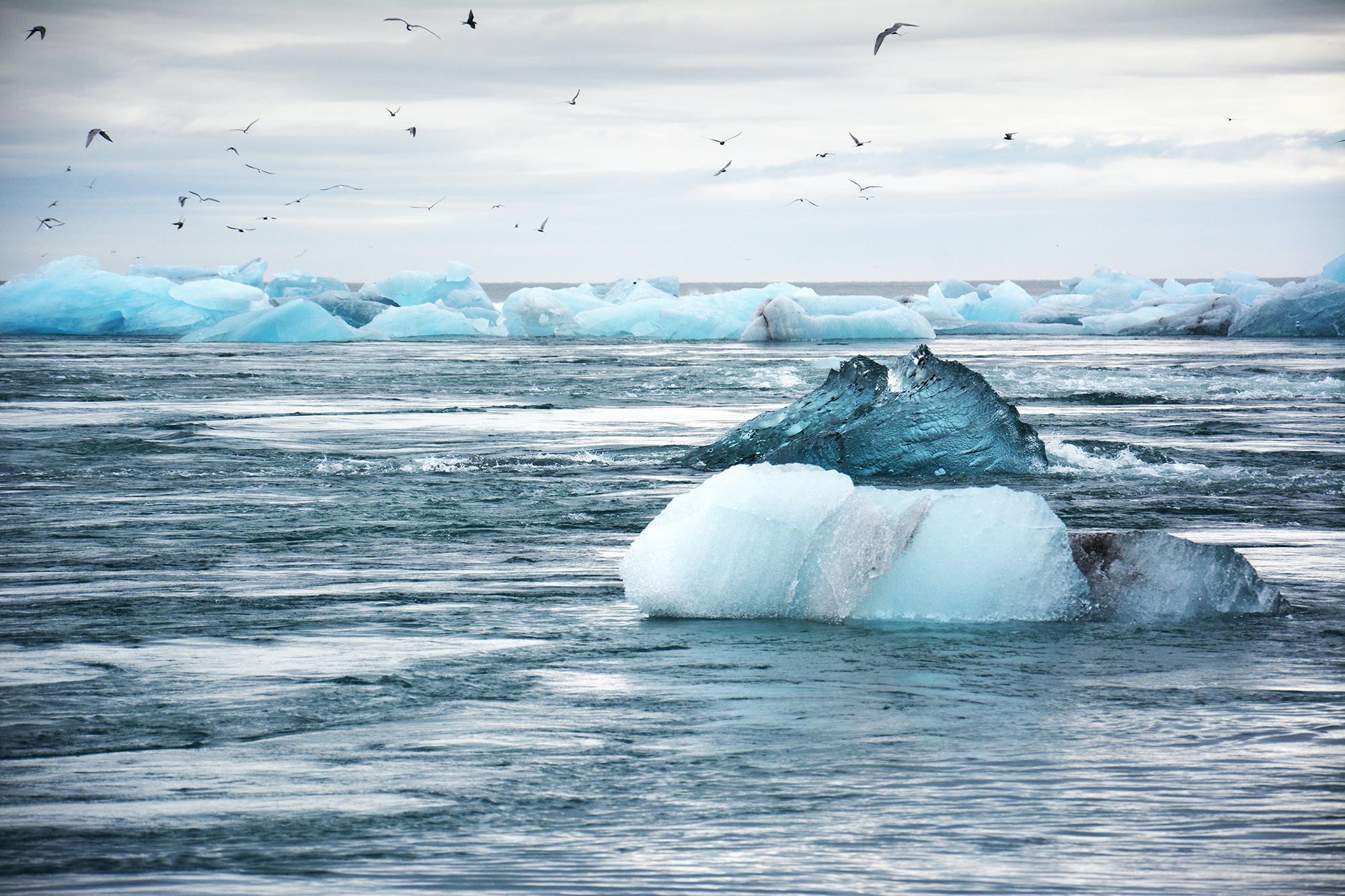 Loi climat: pourquoi ça risque de coincer